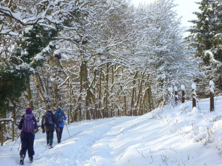 Ruabon - snow, what snow?